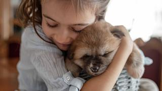 Dicas de adaptação com seu primeiro pet